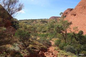 WHV 2014_ Adelaide Darwin (107) 0205