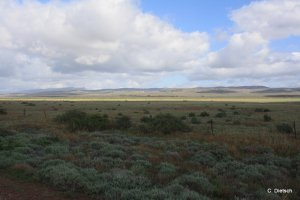 WHV 2014_ Adelaide Darwin (3)